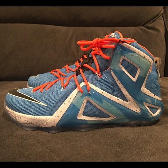 2029ef3006e Nike LeBron XII Elite  Elevate  Mens RARE Size 13